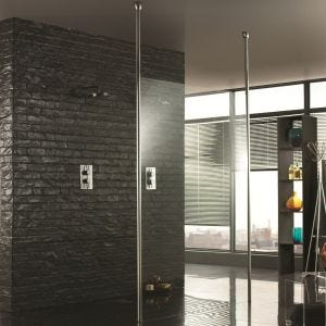 Aquadart Walk Through Wetroom Shower Panel with Two Ceiling Posts