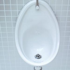 Lecico Atlas 500mm Urinal Bowl